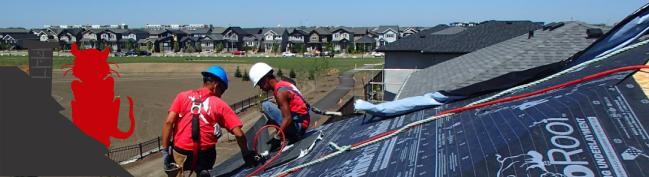 Regina Roofing Contractor